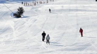 スキー板を選ぶときにチェックしたい6つのポイント:そろそろシーズンインにつき