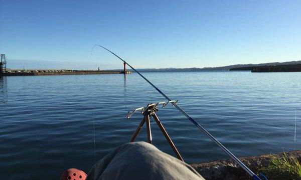 2016年アキアジ第…戦…はいったんお休みでサバ釣り